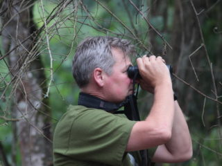 Uganda – CB spots a pink footed puffback!
